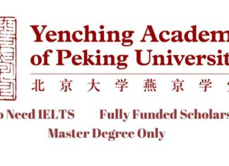 Yenching Academy Scholarship