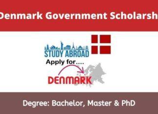 Denmark Government Scholarships